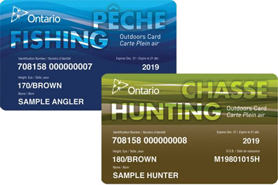 Crystal beach variety lcbo travel lake superior for Renew fishing license